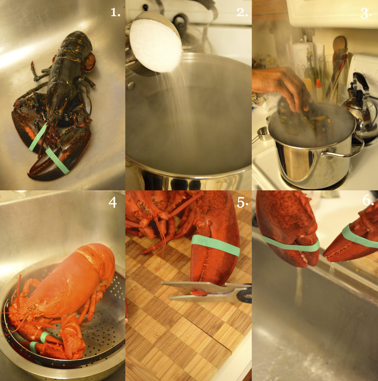 how to cook live lobster boil