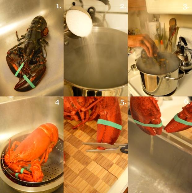 Boiling Live Lobster