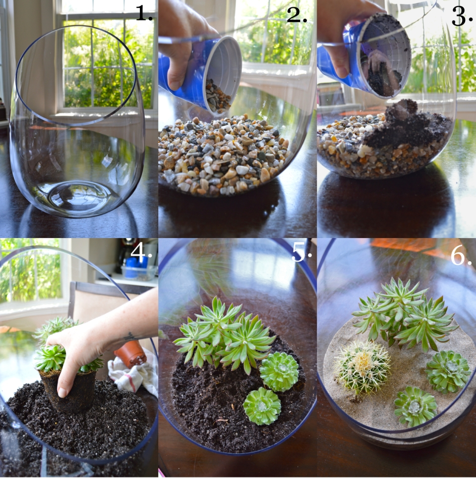 Succulents Terrarium
