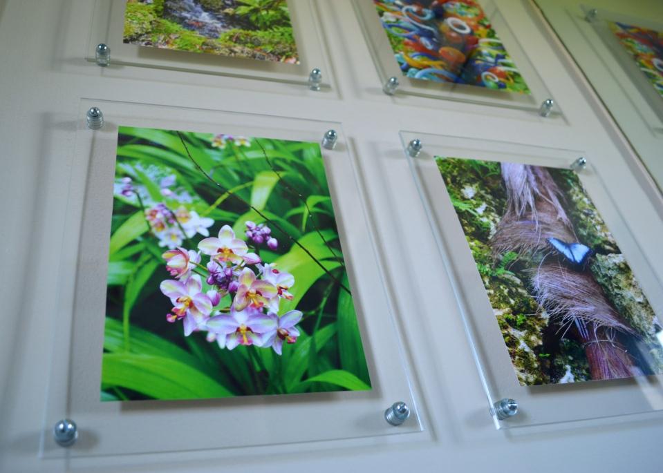Plexiglass Gallery Frames