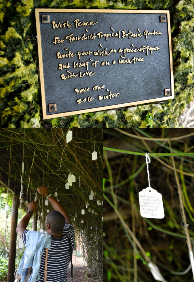 Wish Garden