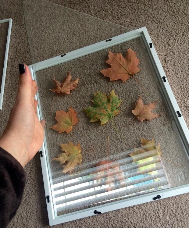 Adding Glass to Frame