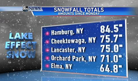 snow fall totals