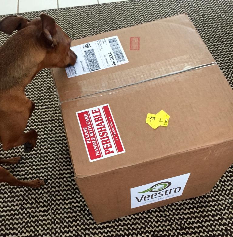 Veestro Box